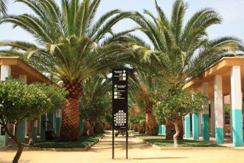 Curso Aromaterapia energetica en Málaga